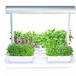 Microgreens by Leaf Learn Mini