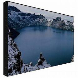 Prestigio Indoor DS Wall Mount LCD 55